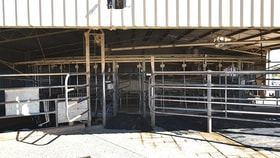 Rural / Farming commercial property for sale at 46 Peppertree Lane Stanhope VIC 3623
