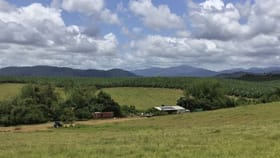 Rural / Farming commercial property for sale at Lot 9 Innisfail Japoon Road Camp Creek QLD 4871