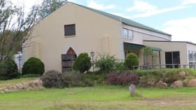 Rural / Farming commercial property for sale at 27112 New England Highway Ballandean QLD 4382
