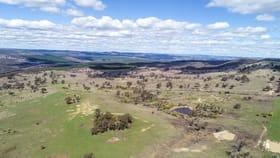 Rural / Farming commercial property for sale at 225 Bradene Road Neville NSW 2799