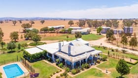 Rural / Farming commercial property for sale at 79 Leneva Lane Canowindra NSW 2804