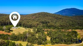 Rural / Farming commercial property sold at 360 Bobs Creek Road Bobs Creek NSW 2439