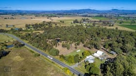 Rural / Farming commercial property for sale at 6128 Mount Lindesay Highway Veresdale QLD 4285