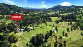 Rural / Farming commercial property for sale at 157 Middle Creek Road Federal QLD 4568