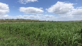 Rural / Farming commercial property for sale at Lot 54 Burnett Highway Eidsvold QLD 4627