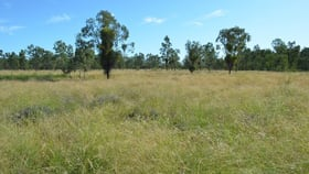 Rural / Farming commercial property for sale at 0 Brennans Road Goondiwindi QLD 4390