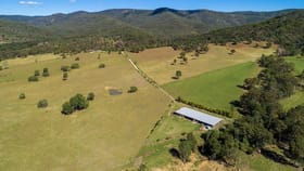 Rural / Farming commercial property for sale at 364 Upper Thornside Road Widgee QLD 4570
