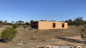 Rural / Farming commercial property for sale at 21/ Hundred Line Road Perponda SA 5308