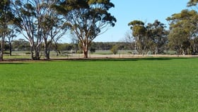 Rural / Farming commercial property for sale at Lot 810 Cooper Street Moora WA 6510