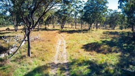 Rural / Farming commercial property for sale at L1- 100 ha/3053 Nullo Mountain Road Nullo Mountain Rylstone NSW 2849