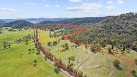Rural / Farming commercial property for sale at 299 Yarraman Road Wybong NSW 2333