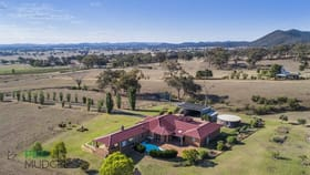 Rural / Farming commercial property for sale at 217 Rocky Waterhole Road Mudgee NSW 2850
