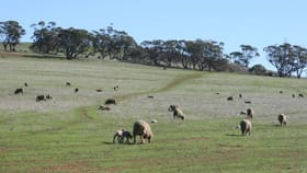 Rural / Farming commercial property for sale at Beverley WA 6304