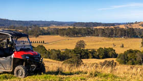 Rural / Farming commercial property for sale at 87 Norries Road Bunyah NSW 2429