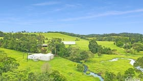 Rural / Farming commercial property for sale at 1186 THERESA CREEK ROAD Millaa Millaa QLD 4886