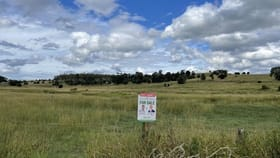 Rural / Farming commercial property for sale at Red Bridge Road Boonah QLD 4310