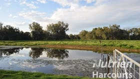 Rural / Farming commercial property for sale at Lot 2/Lot 2, 113 Wilson Road Wangaratta VIC 3677