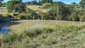Rural / Farming commercial property for sale at 001 Glenelg Rd Bundarra NSW 2359