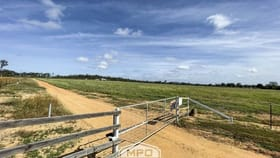 Rural / Farming commercial property for sale at 60 Davenport Road Dimbulah QLD 4872