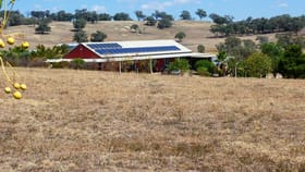 Rural / Farming commercial property for sale at 77 COMMISSIONERS LANE Stuart Town NSW 2820