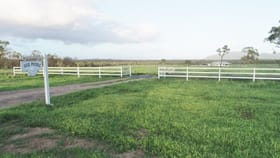 Rural / Farming commercial property for sale at 7000 Roma Peak Road Bowen QLD 4805