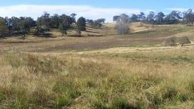 Rural / Farming commercial property for sale at 'Thojimtil/14724 Gwydir Highway Glen Innes NSW 2370