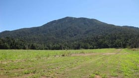 Rural / Farming commercial property for sale at Lower Tully QLD 4854