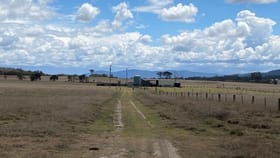 Rural / Farming commercial property for sale at 335 Washpool Creek Road Tenterfield NSW 2372