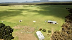 Rural / Farming commercial property for sale at 154 Bluff Creek Road Green Range WA 6328