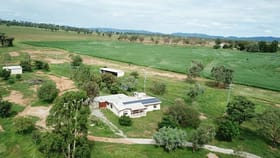 Rural / Farming commercial property for sale at 387 Soldiers Settlement Road Tamworth NSW 2340