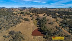 Rural / Farming commercial property for sale at 435 Kaludabah Road Mudgee NSW 2850