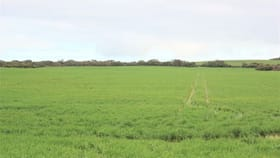 Rural / Farming commercial property for sale at Lot 502 McKenzie Road Foul Bay SA 5577