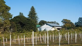 Rural / Farming commercial property for sale at Dunoon NSW 2480
