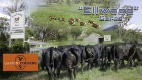 Rural / Farming commercial property for sale at 11728 New England Hwy Tamworth NSW 2340