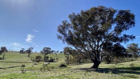 Rural / Farming commercial property for sale at Lot 132, 1488 Mutton Falls Road O'connell NSW 2795