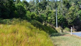 Rural / Farming commercial property for sale at 585 El Arish/Mission Beach Road Maria Creeks QLD 4855