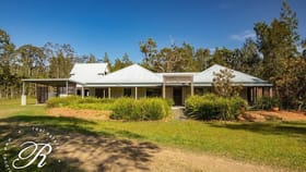Rural / Farming commercial property for sale at 95 Racecourse Road Bungwahl NSW 2423