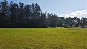 Rural / Farming commercial property for sale at Pacific Highway Wyong NSW 2259