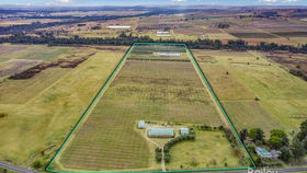 Rural / Farming commercial property for sale at 381 Milbrodale Road Broke NSW 2330