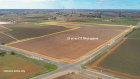 Rural / Farming commercial property for sale at Block/360 & 361 Myall Street Red Cliffs VIC 3496