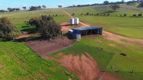 Rural / Farming commercial property for sale at York WA 6302