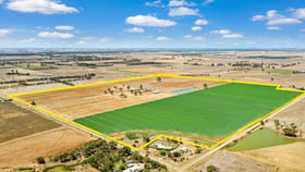 Rural / Farming commercial property for sale at 459 Echuca West School Road Echuca West VIC 3564