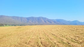 Rural / Farming commercial property for sale at 1 Catholic Cemetery Road Araluen NSW 2622