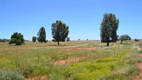 Rural / Farming commercial property for sale at * Windera Station Cobar NSW 2835