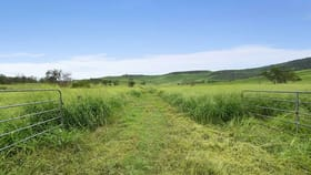 Rural / Farming commercial property for sale at Lot 2, 136 Laidley Creek West Road Mulgowie QLD 4341