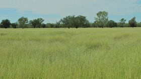 Rural / Farming commercial property sold at 0 Bullering Surat QLD 4417