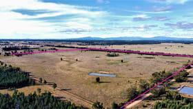 Rural / Farming commercial property for sale at 80 Jones Lagoon Road Bohena Creek NSW 2390
