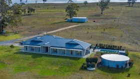 Rural / Farming commercial property for sale at 218 Goorangoola Road Singleton NSW 2330