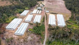Rural / Farming commercial property for sale at 2034 Rosedale Road Avondale QLD 4670