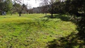 Rural / Farming commercial property for sale at 3237 Tallangatta Creek Rd Tallangatta VIC 3700